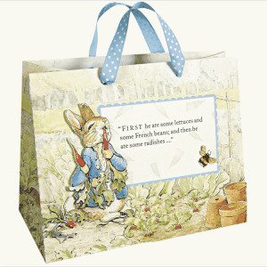 Fashionable Recycled Paper Gift Bags , Printed Reusable Shopping Bags